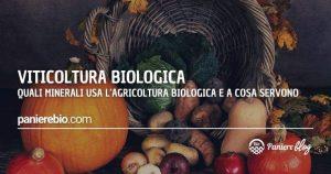 Quali sali minerali si usano nella viticoltura bio e a cosa servono?