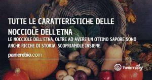 Tutte le caratteristiche delle nocciole dell'Etna patrimonio genetico siciliano.