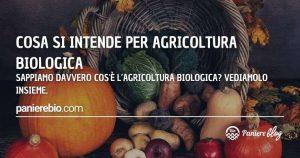 Ecco in che cosa consiste praticare agricoltura biologica