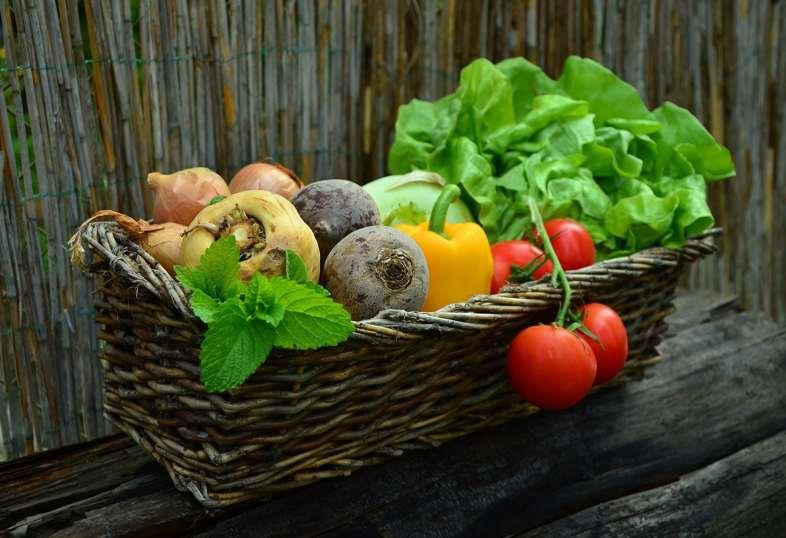 Le verdure sono prodotti organici